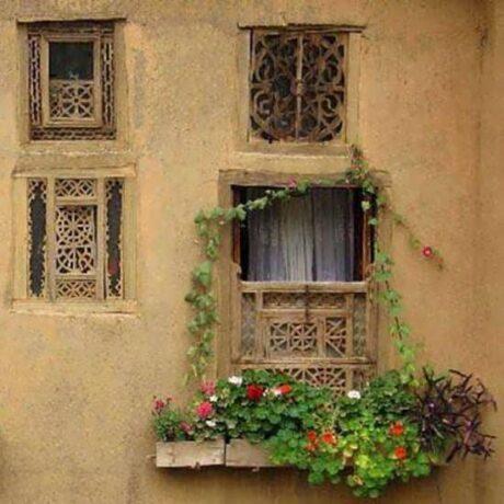 علیرضا روزگار پنجره ها