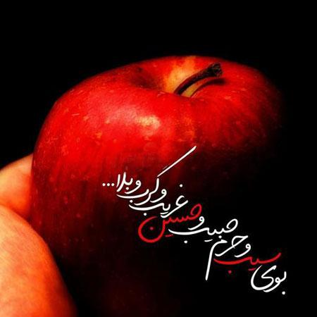 مداحی بوی سیب و حرم حبیب