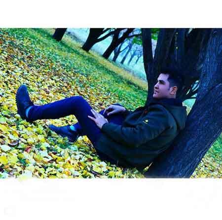 دانلود فول آلبوم حسین عاشقی